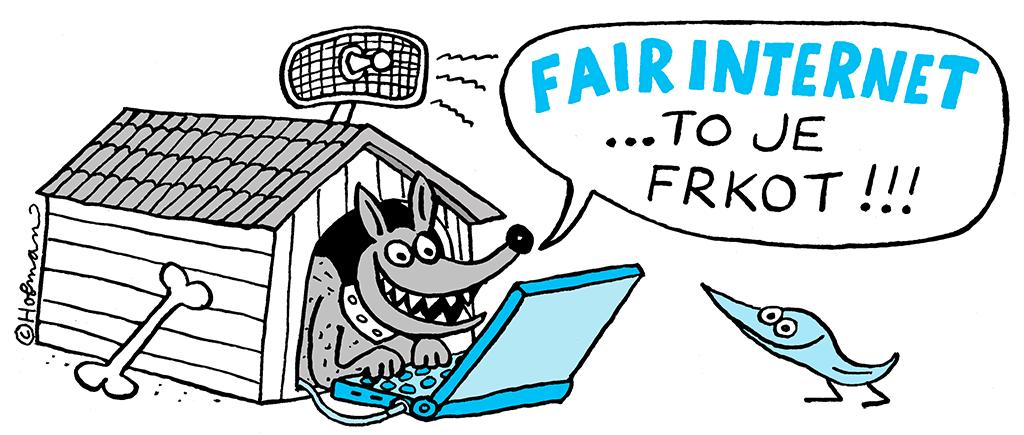 Fair Internet